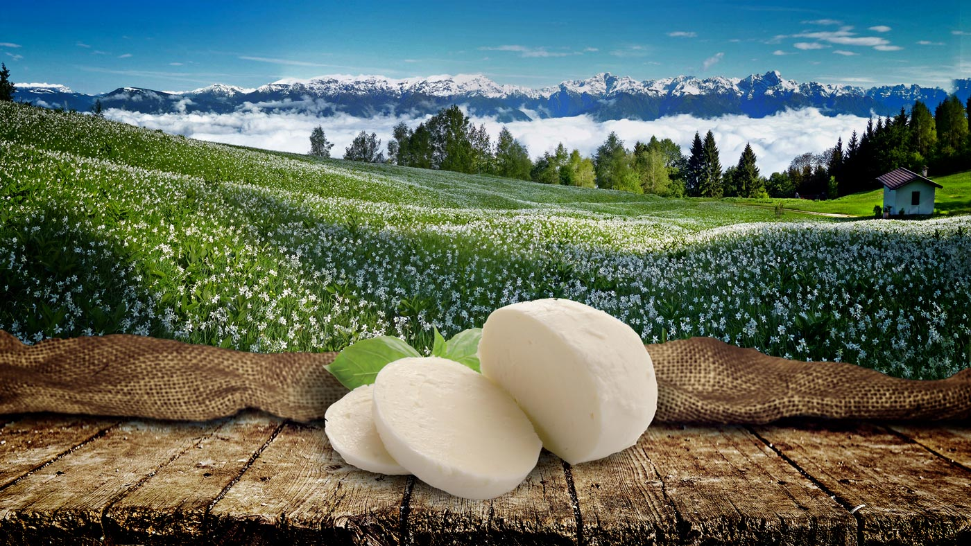 Filiera Corta 100% Valbelluna - Mozzarella Bellunese